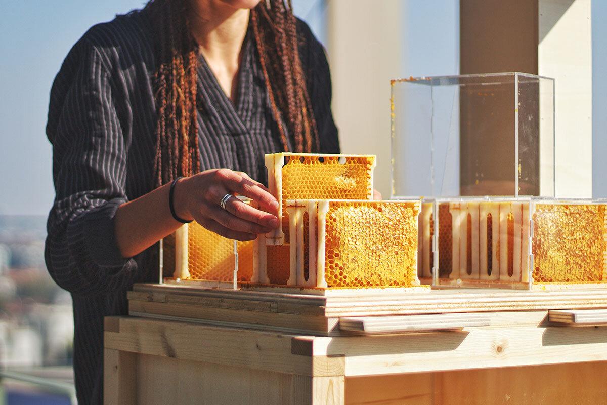 Young woman beekeeping